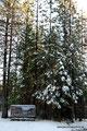 USA_Kalifornien_Yosemite NP_Parkeinfahrt