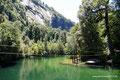 Chile_Cochamó_Valle de Cochamó_Unterwegs im Valdivianischen Regenwald16