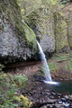 USA_Oregon_Columbia River Gorge National Scenic Area_Ponytail Falls1