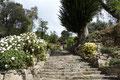 Bolivien_Titicacasee_Isla del Sol3