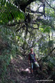 Honduras_Nationalpark Cerro Azul Meámbar_Im Wald