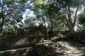 Belize_San Ignacio_Cahal Pech6