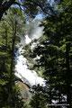 Chile_Huerquehue NP_Erster Wasserfall