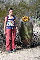 USA_Arizona_Tucson_Sabino Canyon-Fast gleich groß