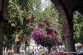 Mexiko_Mexiko-City und Umgebung_Pátzcuaro_Zurück am Platz