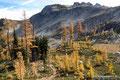 USA_Washington_Nordkaskaden NP_Maple Pass Trail_Maple Pass in Sicht