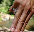 Argentinien_Parque Provincial Salto Encantado_Die 88 auf meiner Hand