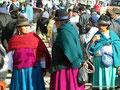 Ecuador_Otavalo_Auf dem Tiermarkt7