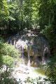 Guatemala_Osten_Finca El Paraíso_Heißes Wasser