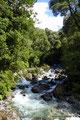 Chile_Cochamó_Valle de Cochamó_Unterwegs im Valdivianischen Regenwald4