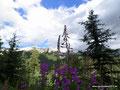 Kanada_Alberta_Banff NP_Banff_Ink Pots Trail4