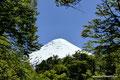 Chile_Vicente Peréz Rosales NP_Osorno5