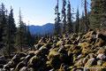 USA_Washington_Mt Baker National Rec Area_Park Butte Trail_Bemooste Steinmännchen