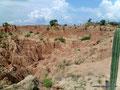 Kolumbien_Tatacoa-Wüste_Rot10