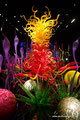 USA_Washington_Seattle_Chihuly Garden and Glass_Mille Fiori2
