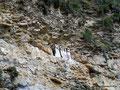 Peru_Karajia_Sarkophagi in der Felswand1