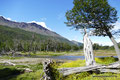 Argentinien_Feuerland_Ushuaia_Auf dem Rückweg