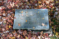 Kanada_British Columbia_Vancouver Island_Victoria_Friedhof4