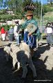 Ecuador_Otavalo_Auf dem Tiermarkt5