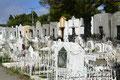 Chile_Punta Arenas_Friedhof6