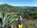 Ecuador_Vilcabamba_Agave