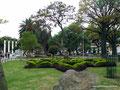 Ecuador_Loja_Park