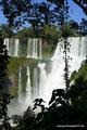 Argentinien_Iguazú NP_Die Front5