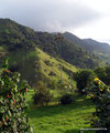 Kolumbien_Valle de Cocora_Das Wetter wird besser