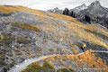USA_Washington_Nordkaskaden NP_Maple Pass Trail_Abstieg
