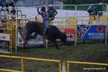 El Salvador_Ahuachapán_Rodeo zum Festivalsauftakt5