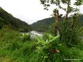 Ecuador_Cosanga_Am Fluss