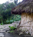 Kolumbien_Ciudad Perdida Trek28