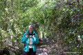 Chile_Cochamó_Valle de Cochamó_Unterwegs im Valdivianischen Regenwald1