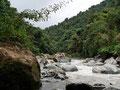 Costa Rica_Tapanti NP_Río Grande de Orosi