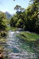 Chile_Cochamó_Valle de Cochamó_Unterwegs im Valdivianischen Regenwald14
