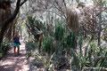 Mexiko_Zentrale Atlantikküste und Puebla_Cadereyta de Montes_Besuch in der Quinta Fernando Schmoll8