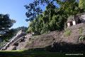 Mexiko_Oaxaca und Chiapas_Palenque2