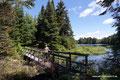 Kanada_Québec_Mauricie NP_Auf der Brücke