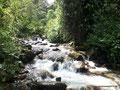 Kolumbien_Valle de Cocora_Kalt
