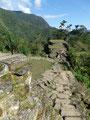 Kolumbien_Ciudad Perdida Trek - Die Hauptebene2