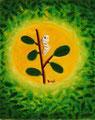 小満(5月21日頃~)初候「蚕起きて桑を食む」