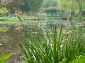 Maison et jardins Claude Monet