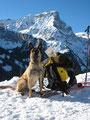 Gorneren Lawinenhundetraining