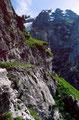 Hüttenweg, der wegen der Steilheit des Geländes Trittsicherheit und Schwindelfreiheit erfordert