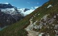 Der Steig über Wiesenterrassen zum Kl. und Gr. Grießkogel