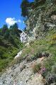 Beachtenswerter Wasserfall und Bloumenpolster im Steilhang