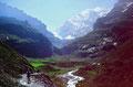 Der Weg ins Gamchi. Hinten die Morgenhorn Nordwand im Blümlisalpmassiv