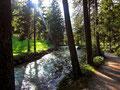Wanderweg zum Schiederweiher in der Polsterlucke
