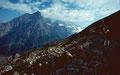 Doldenhorn und Blümlisalp von der ostseitigen Moräne des Lötschengletschers