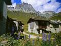 Alpsiedlung Grevasalvas